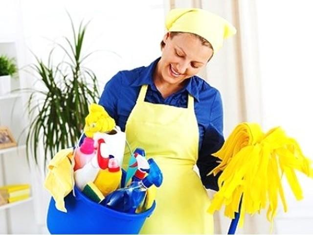 Terceirização de Limpeza e Conservação Preço no Alto da Lapa - Terceirização de Limpeza Predial