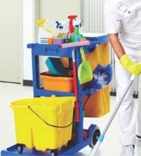 Terceirização de Limpezas em Sp em Aricanduva - Limpeza Terceirizada